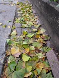 green gutter